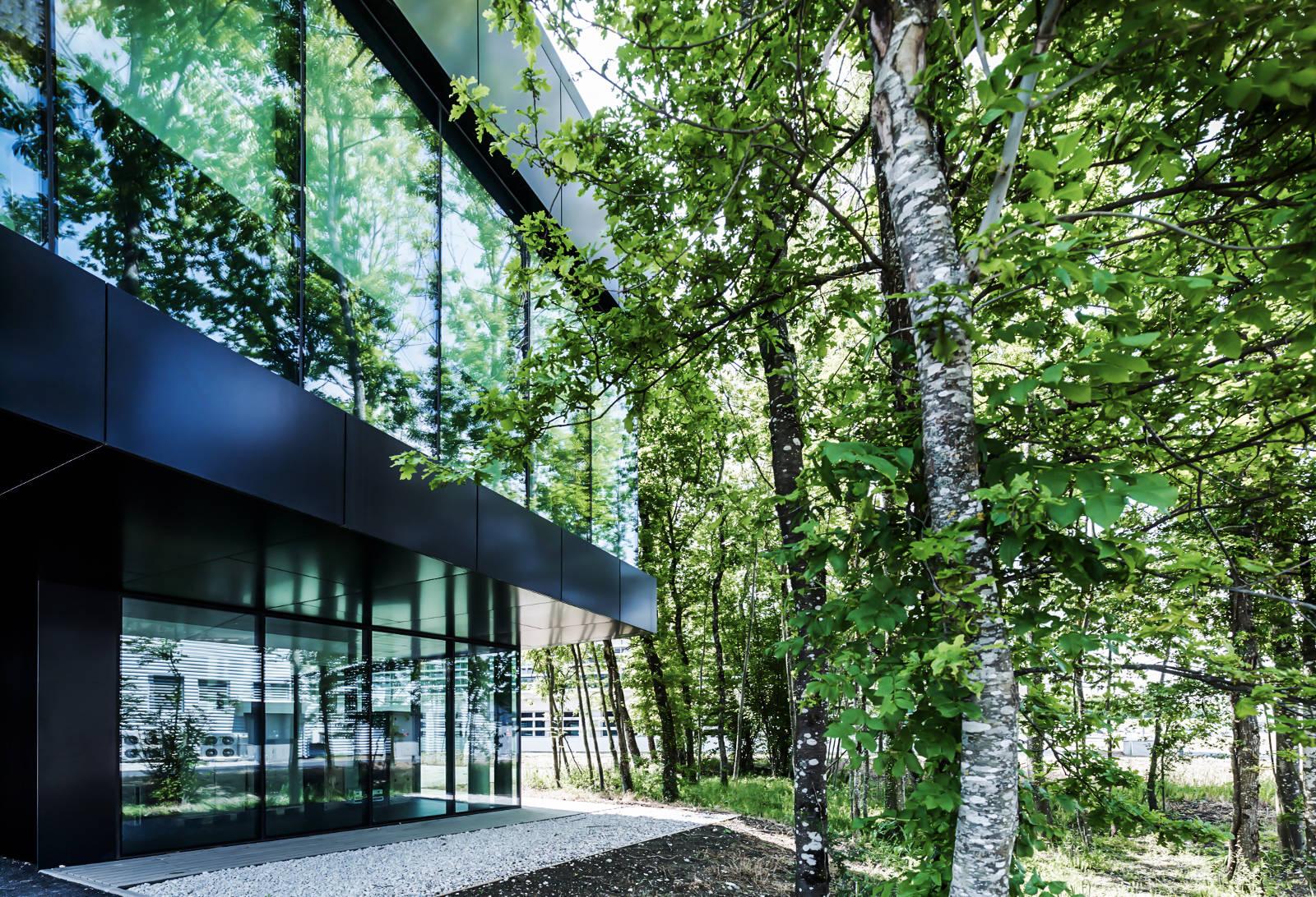 Glassbox CERN Ginebra Oficinas obra nueva edificio 774