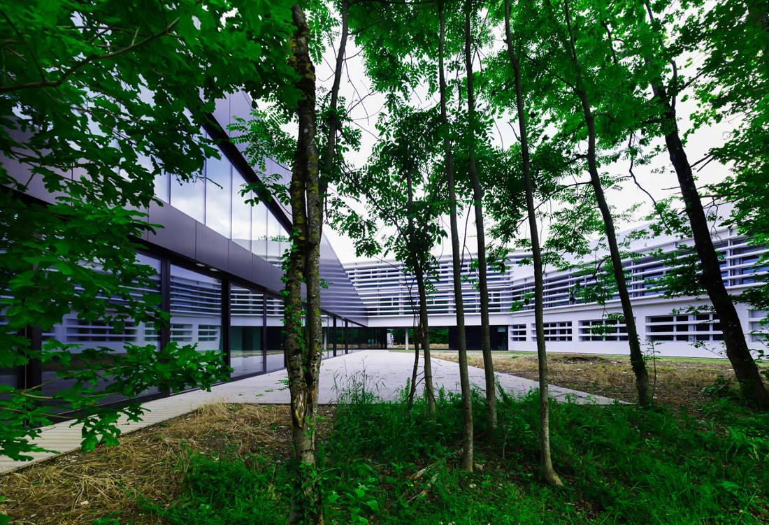 CERN Ginebra Oficinas obra nueva edificio 774 patio 3
