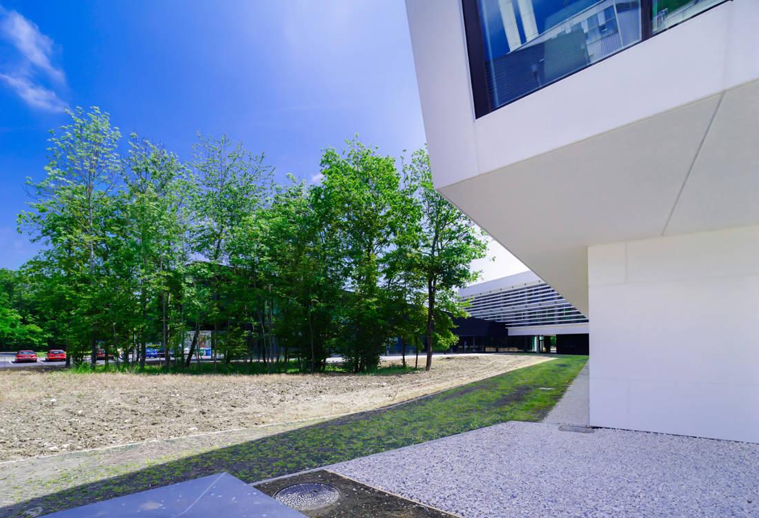 CERN Ginebra Oficinas obra nueva edificio 774 patio 1